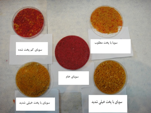Iranian  soy test for cheacking thermalprocessed quality indicator